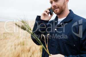 Farmer examining crops while talking on mobile phone in the field