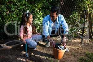 Father and daughter potting a plant in pot at backyard
