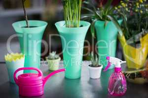 Flower vase, watering can, pot plant and spray bottle on table