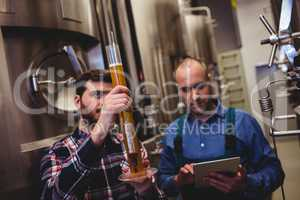 Owner inspecting beer in tube at brewery