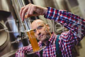 Owner examining beer in glass tube