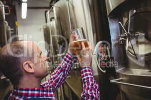 Brewery worker inspecting beer in glass