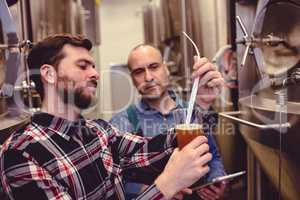 Owner examining beer in glass