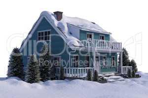 Three dimensional house