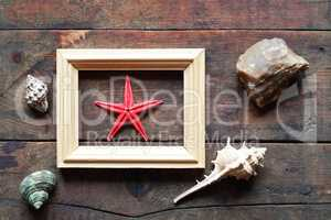 Starfish In Frame