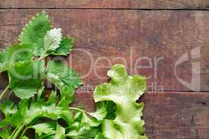 Parsley On Wood