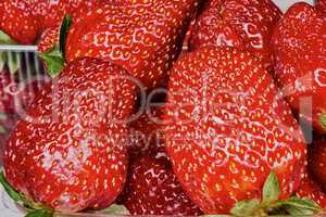 Appetizing strawberries on market stall