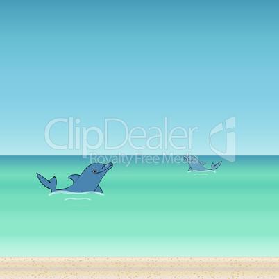 Dolphin sea animal beautiful landscape