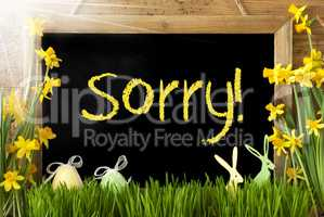 Sunny Narcissus, Easter Egg, Bunny, Yellow Text Sorry