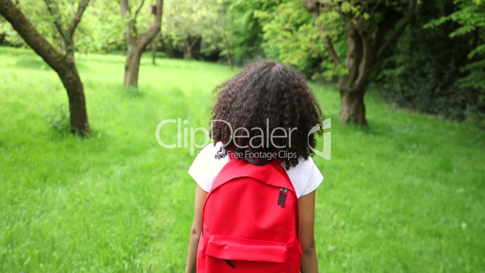 Happy Mixed Race African American Girl Teenager Female -2467