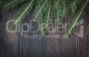 Christmas tree twigs of spruce arranged on aged wooden backgroun
