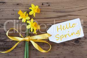 Yellow Narcissus, Label, Text Hello Spring