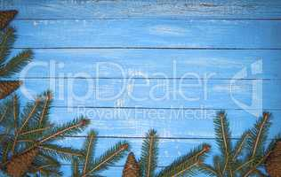 Spruce branches on blue wooden surface Christmas background, vin