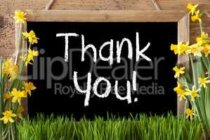 Spring Flower Narcissus, Chalkboard, Text Thank You