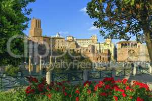 Trajan's forum, Traiani, Roma, Italy