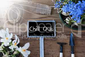Sunny Spring Flowers, Sign, Text Chill Out