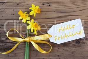 Yellow Narcissus, Label, Hallo Fruehling Means Hello Spring