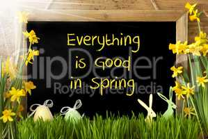 Sunny Narcissus, Easter Egg, Bunny, Text Everything Is Good Spring