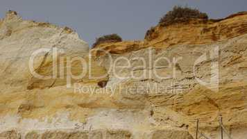 Geology Of Sandstone Rockface