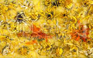 Handmade organic pure soap with calendula herbals flowers