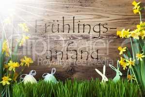 Sunny Easter Decoration, Gras, Fruehlingsanfang Means Beginning Of Spring