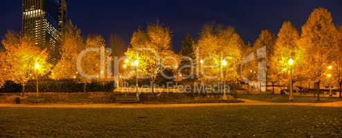 Millenium Park Lights