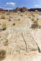 Desert Grooves in Nevada