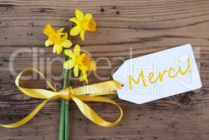 Yellow Spring Narcissus, Label, Merci Means Thank You