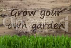 Aged Wooden Background, Gras, Grow Your Own Garden