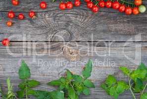 Grey wooden background with ripe red cherry tomatoes and green b