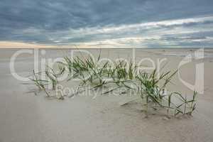 Strand an der Nordseeküste auf der Insel Amrum