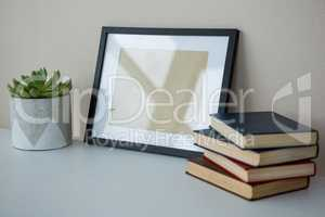 Books with picture frame and pot plant