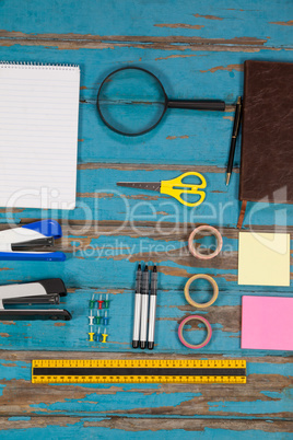 Notepad, stapler, pins, sellotapes, diary, sticky notes, ruler and pens