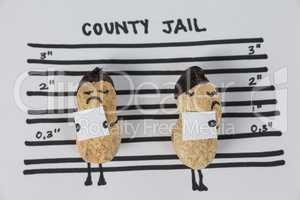 Two peanut figurines in county jail