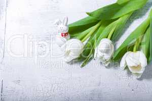 White tulips on wooden table