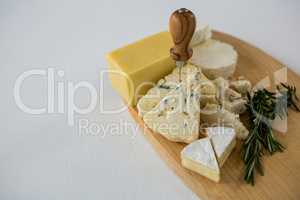Variety of cheese with rosemary and knife on wooden board