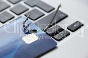 Credit card in fishing hook on laptop