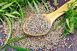 Grain hemp in spoon on dark board