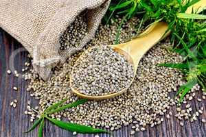 Grain hemp in spoon with bag on board