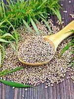 Grain hemp in spoon with leaf on board
