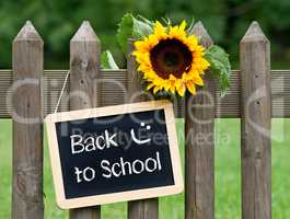 Back to School Chalkboard with Sunflower