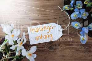 Sunny Flowers, Label, Fruehlingsanfang Means Beginning Of Spring