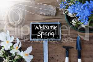 Sunny Flowers, Sign, Text Welcome Spring