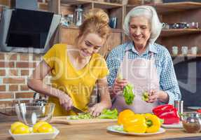 Granddaughter and grandmother cooking together