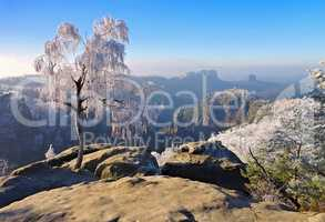 Elbsandsteingebirge im Winter Carolafelsen - Elbe sandstone mountains in winter, Carolarock