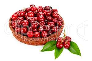 Ripe cherries in the basket isolated on white background