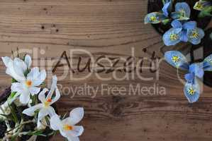 Crocus And Hyacinth, Auszeit Means Downtime