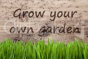 Bright Wooden Background, Gras, Grow Your Own Garden