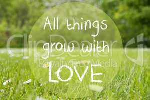 Gras Meadow, Daisy Flowers, Quote All Things Grow With Love