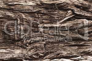 old broken wood fiber close-up